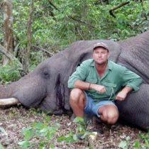 Aplastado por un elefante: así murió un avezado cazador sudafricano