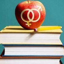 Estudio señala que docentes chilenos no se sienten capacitados para educar sobre sexualidad