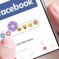 El significado de la flor morada que volvió a las reacciones de Facebook