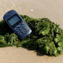 Cuáles son los idiomas que están en peligro de extinción por culpa de los smartphones