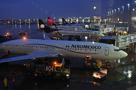 Un escorpión pica a una mujer en pleno vuelo de México a Chicago