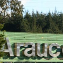 Grupo Angelini habría ofrecido US$4.000M por Eldorado Brasil Celulose