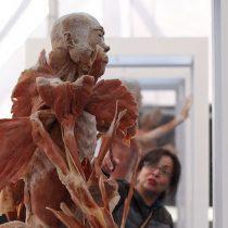 """Exhibición """"Bodies: Cuerpos humanos reales"""" en Mall Florida Center"""