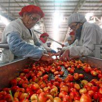 Otro espionaje entre empresarios: Asociación de Exportadores de Frutas presenta querella por delito informático
