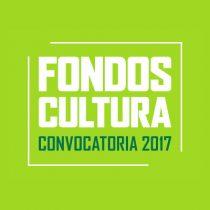 Lo que faltaba: Fondo del Consejo de Cultura se excusa de entregar financiamiento porque no tiene fondos