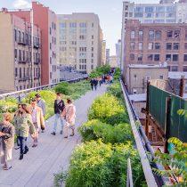 Calles verdes: ¿pueden las ciudades tomar la iniciativa en la lucha contra el cambio climático?