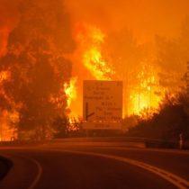 Dramáticas imágenes del devastador incendio en Portugal que dejó más de 60 muertos