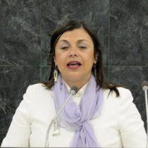 Chilena con discapacidad visual es nueva enviada especial de la ONU