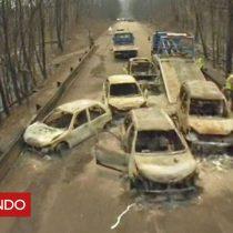 [VIDEO] Estremecedoras imágenes de un dron muestran los autos calcinados por el feroz incendio en Portugal