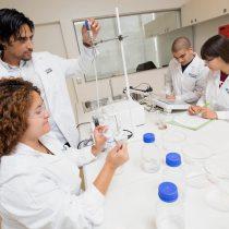 Científicos chilenos elaboran nanopartícula que ayuda a la lucha contra el envejecimiento
