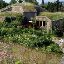 Alemania, sus bosques y la visión de un arquitecto de viviendas ecológicas