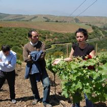 La científica chilena y su apuesta por las viñas sustentables