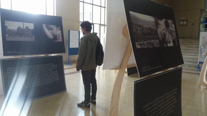 Muestra fotográfica se apodera de vitrinas de Santiago
