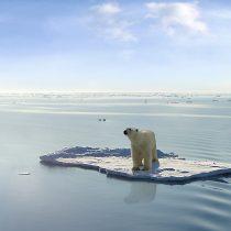 Calentamiento global: el rol del amoniaco en la sustitución de los combustibles fósiles