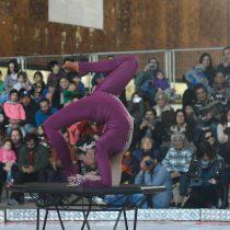 Día del Circo se celebrará con desfile por la Alameda de Santiago