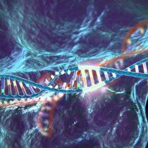 ¿Hijos a la carta?: mitos y certezas tras la manipulación genética CRISPR/Cas9