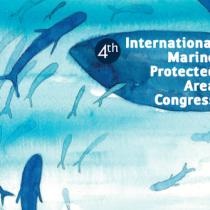Chile inaugura muestra fotográfica de biodiversidad marina en marco de IMPAC4