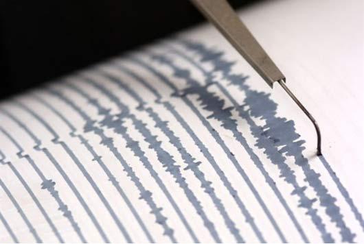 Temblor sacudió esta madrugada zona central del país