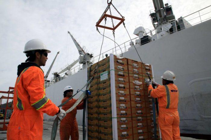 Gobierno presenta querellas contra ocho trabajadores portuarios por falsificar certificados médicos para acceder a pensión de gracia