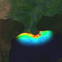 """La """"zona muerta"""" del golfo de México: la inmensa área del tamaño de El Salvador que preocupa a los científicos porque la vida marina es inviable"""