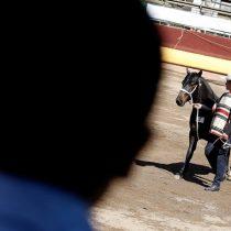 Protesta contra el rodeo finalizó con 29 detenidos en el parque Alberto Hurtado