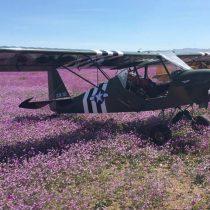 [VIDEO] Indignación por aterrizaje de once avionetas sobre desierto florido en Atacama