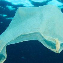 En más de 100 comunas costeras se prohibirá la entrega de bolsas plásticas, de aprobarse ley propuesta por Bachelet