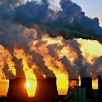 La banalización del medioambiente