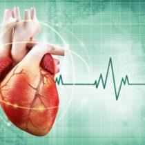 La paradoja cardiaca: cuando ser delgado no implica necesariamente tener un corazón sano