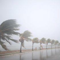 Harvey, Irma… y el futuro. O el último peligro de la crisis ecológica: La desoxigenación