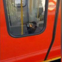 [VIDEO] La bolsa y el balde en llamas dentro de un vagón que investigan tras el incidente