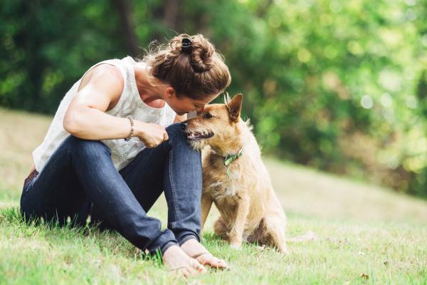 Parasitología en animales: Conoce el rol del médico veterinario y cómo evitar los riesgos para los humanos