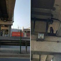 Curioso caso de perro atrapado bajo vías de un puente en Autopista Central enciende las alarmas de animalistas