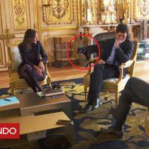 [VIDEO] El momento en que el perro del presidente francés Emmanuel Macron se orina en plena reunión ministerial