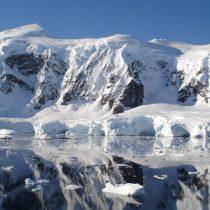 Científicos de 19 nacionalidades darán vida al IX Congreso Latinoamericano de Ciencia Antártica en Punta Arenas