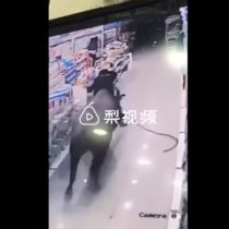 [VIDEO] Búfalo se escapa de matadero y en carrera envía a mujer embarazada a los estantes en supermercado