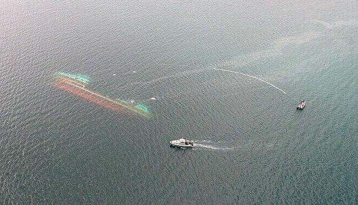 Greenpeace dispara contra industria salmonera tras carta degerente de salmonicultora Ventisqueros: