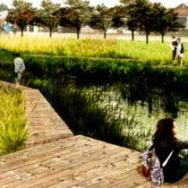 Aprueban plan de infraestructura verde para la conservación de humedales en Llanquihue