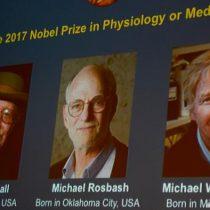 Tres estadounidenses, Nobel de Medicina por estudios del