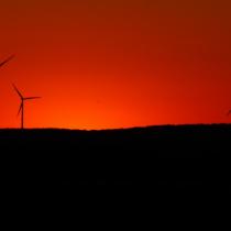 PNUD evalúa riesgos y oportunidades ambientales para el sector financiero en Chile