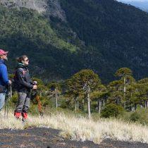 """""""Expoturismo Sur de Chile"""" aterriza en Argentina para mostrar oferta turística de nuestro país"""