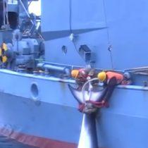 [VIDEO] Difunden registro de la cruda matanza de ballenas por navíos japoneses «oculto» por el gobierno australiano