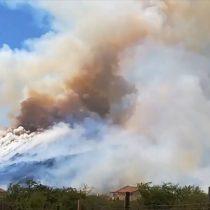 [VIDEO] Onemi declara alerta roja por incendio forestal en Chicureo