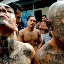 Detienen a 267 pandilleros de la Mara Salvatrucha en EE.UU. y en El Salvador
