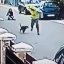 [VIDEO] La patrulla canina: heroico perro salva a una mujer de ser asaltada por un ladrón