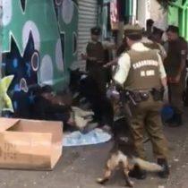 [VIDEO] Denuncian violento actuar de carabineros con perros contra indigente en la Vega