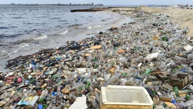 """Una crisis planetaria: las terribles consecuencias de la """"plaga de plástico"""" en los océanos del mundo"""