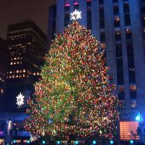 El árbol de pascua tradicional, otra industria en peligro de extinción por el