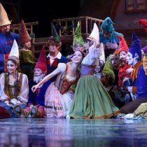 Ballet gratuito La Bella Durmiente en Parque Bicentinario