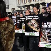 [VIDEO] Activistas animalistas protestan contra el uso de pieles en la moda
